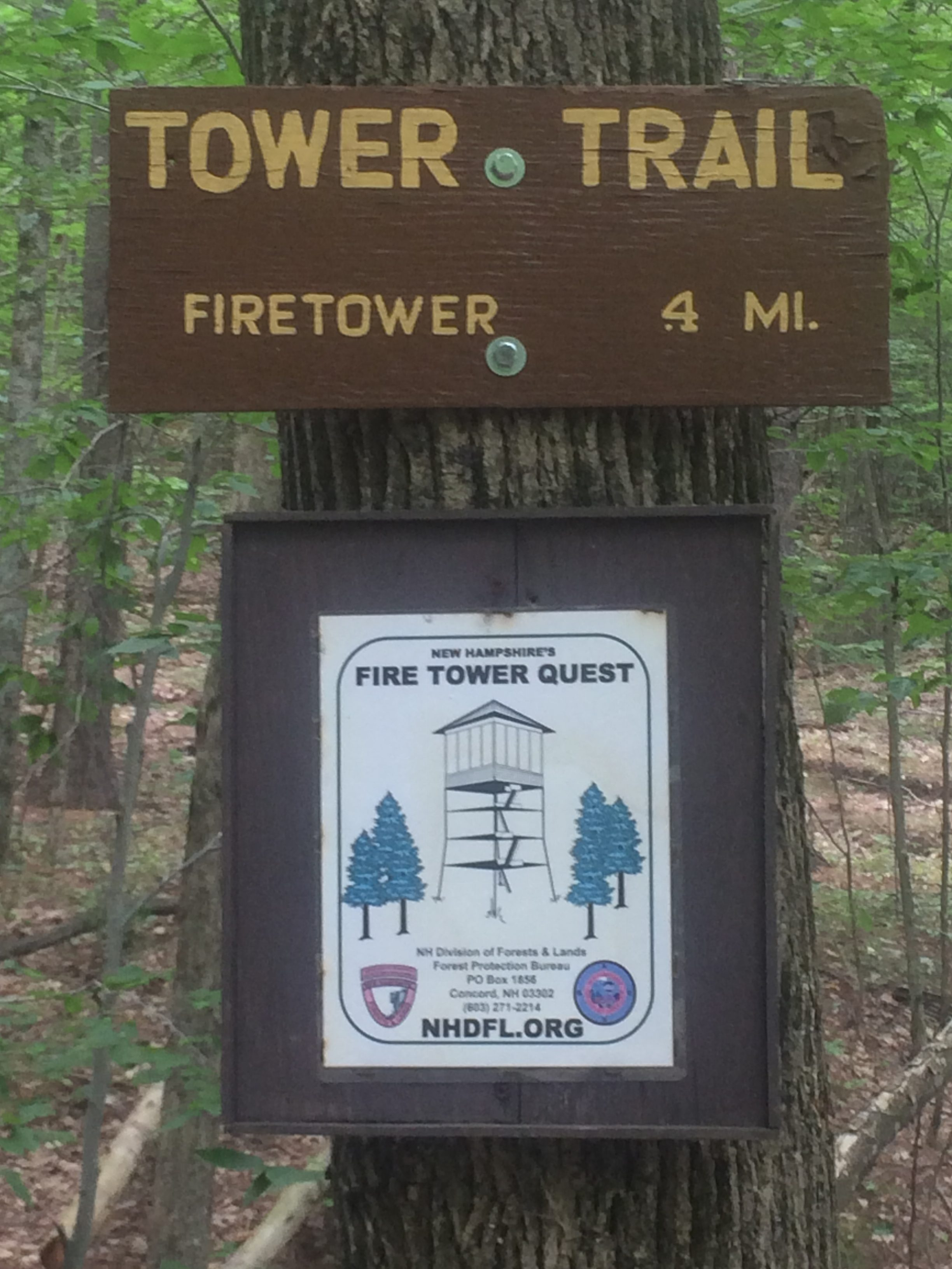 Pawtuckaway state park and fire tower nh eastcoasthiker here is some of what you need to know read below regarding day use fee for the other section of the park publicscrutiny Gallery